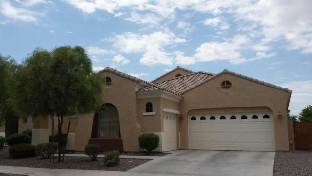 2417 E Iris Drive, Chandler, AZ 85286 (MLS #5768701) :: Yost Realty Group at RE/MAX Casa Grande