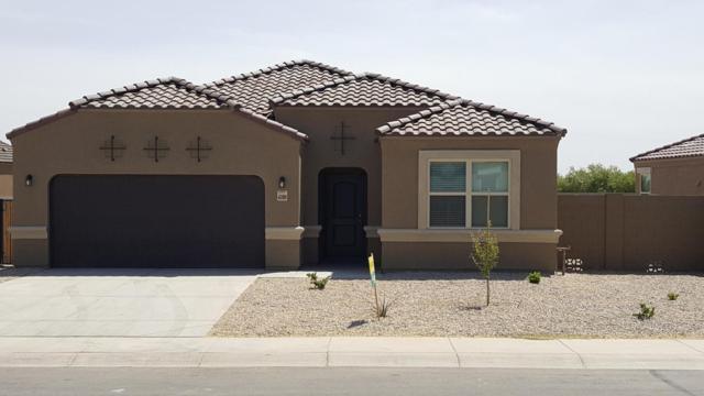 16735 N Luna Drive, Maricopa, AZ 85138 (MLS #5768706) :: Yost Realty Group at RE/MAX Casa Grande