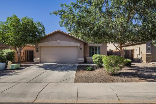 3700 E Alamo Street, San Tan Valley, AZ 85140 (MLS #5768710) :: Yost Realty Group at RE/MAX Casa Grande