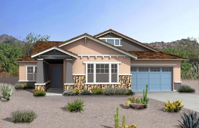 21005 E Arroyo Verde Court, Queen Creek, AZ 85142 (MLS #5768723) :: The Everest Team at My Home Group