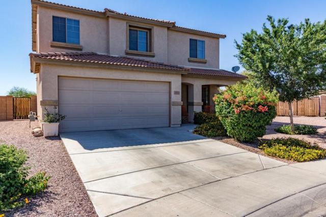 14324 N 160TH Drive, Surprise, AZ 85379 (MLS #5768733) :: Essential Properties, Inc.