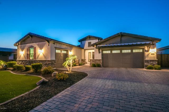 3830 E Horseshoe Place, Chandler, AZ 85249 (MLS #5768745) :: Lifestyle Partners Team