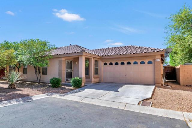 3929 S Illinois Street, Chandler, AZ 85248 (MLS #5768767) :: Conway Real Estate