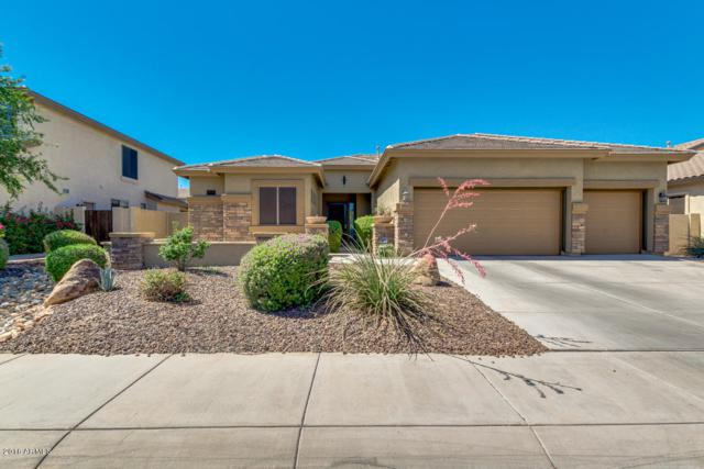 3905 E Vallejo Drive, Gilbert, AZ 85298 (MLS #5768768) :: 10X Homes