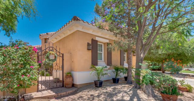 3101 S Salt Cedar Place, Chandler, AZ 85286 (MLS #5768814) :: 10X Homes