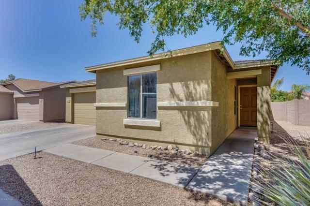 40562 N High Meadows Drive, San Tan Valley, AZ 85140 (MLS #5768819) :: Yost Realty Group at RE/MAX Casa Grande