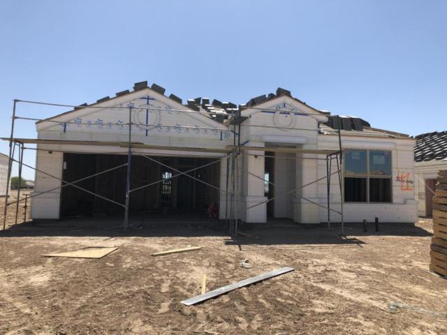 575 W Danish Red Trail, San Tan Valley, AZ 85143 (MLS #5768821) :: Yost Realty Group at RE/MAX Casa Grande