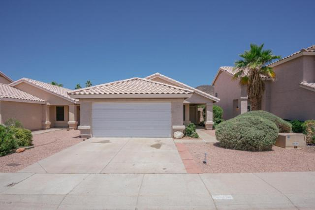 5026 W Tonto Road, Glendale, AZ 85308 (MLS #5768824) :: Riddle Realty