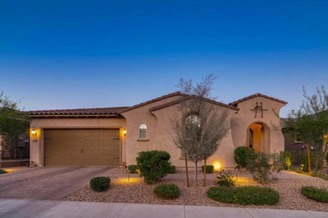 23121 N 47TH Street, Phoenix, AZ 85050 (MLS #5768828) :: Cambridge Properties