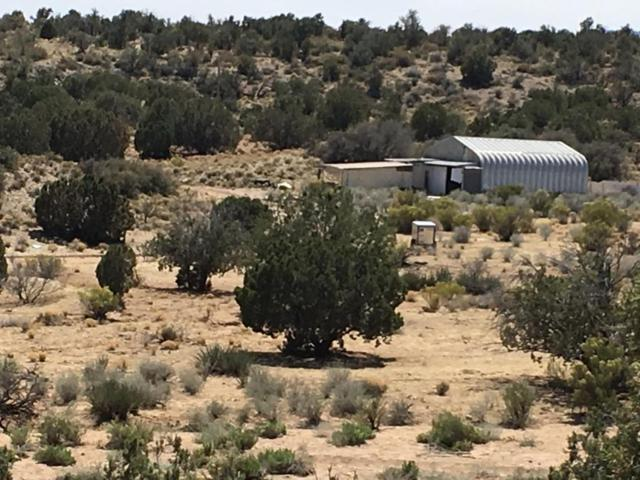 10888 E Doberman Road, Kingman, AZ 86401 (MLS #5768832) :: The Garcia Group @ My Home Group