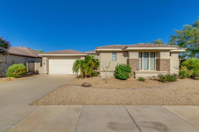 4463 N 154TH Avenue, Goodyear, AZ 85395 (MLS #5768834) :: Brett Tanner Home Selling Team