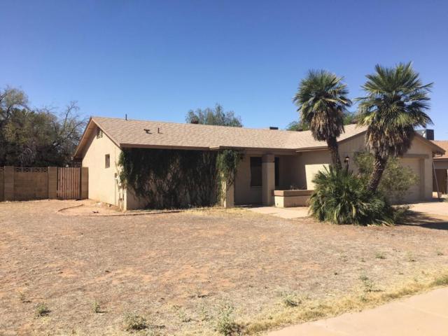 1327 E Harmony Circle, Mesa, AZ 85204 (MLS #5768843) :: Revelation Real Estate