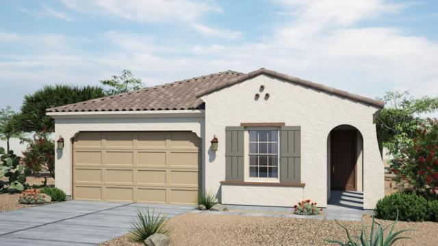 1009 S 200TH Lane, Buckeye, AZ 85326 (MLS #5768862) :: Essential Properties, Inc.