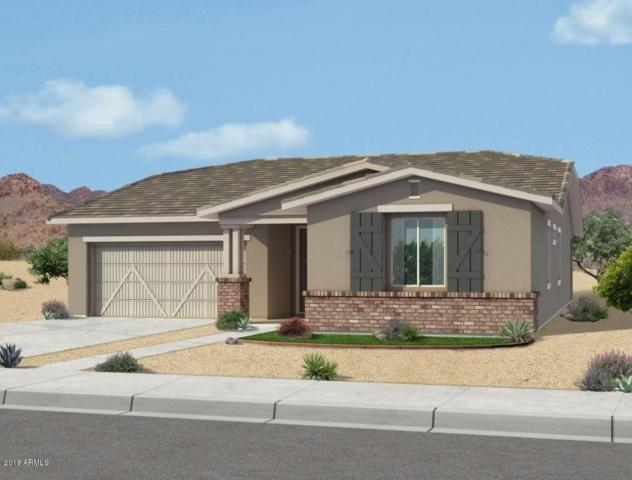 22572 E Duncan Street E, Queen Creek, AZ 85142 (MLS #5768868) :: My Home Group