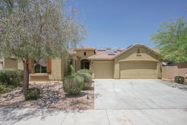 11958 W Daley Lane, Sun City, AZ 85373 (MLS #5768872) :: Essential Properties, Inc.
