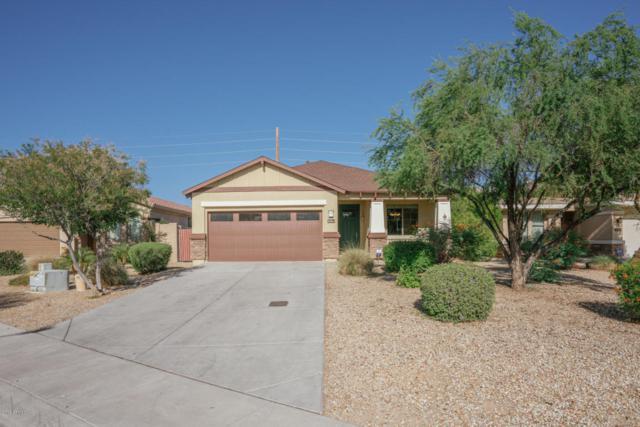 205 N 107TH Drive, Avondale, AZ 85323 (MLS #5768880) :: Brett Tanner Home Selling Team