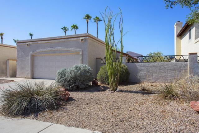 1406 E Topeka Drive, Phoenix, AZ 85024 (MLS #5768881) :: Revelation Real Estate