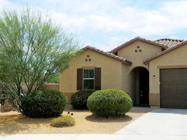 2680 S 171ST Lane, Goodyear, AZ 85338 (MLS #5768889) :: Brett Tanner Home Selling Team