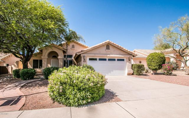 6364 E Virginia Street, Mesa, AZ 85215 (MLS #5768896) :: Conway Real Estate