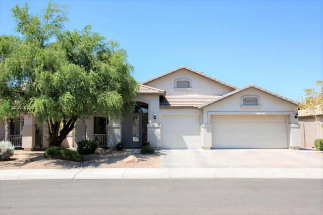 510 W Marlin Place, Chandler, AZ 85286 (MLS #5768921) :: Conway Real Estate