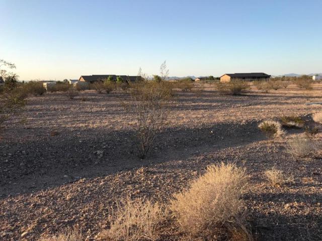 1437 S 357TH Avenue, Tonopah, AZ 85354 (MLS #5768963) :: Brett Tanner Home Selling Team