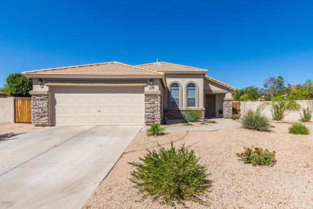 9124 E Hillview Circle, Mesa, AZ 85207 (MLS #5768966) :: Conway Real Estate