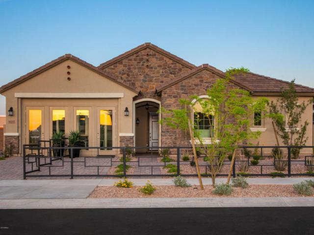 4431 S Benton Lane, Mesa, AZ 85212 (MLS #5768972) :: Conway Real Estate