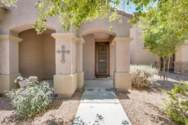 8009 S 69TH Lane, Laveen, AZ 85339 (MLS #5768994) :: Team Wilson Real Estate