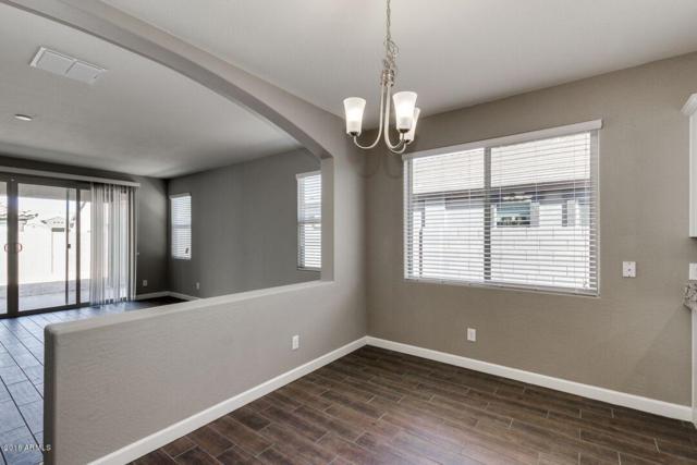 43893 W Caven Drive, Maricopa, AZ 85138 (MLS #5768996) :: Yost Realty Group at RE/MAX Casa Grande