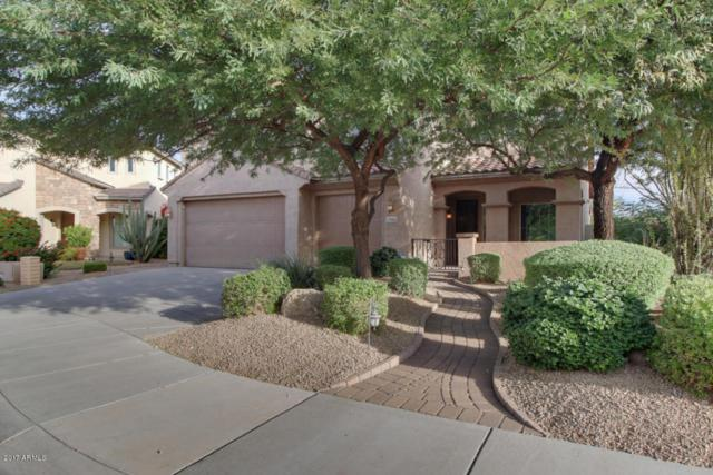 27065 N 90th Avenue, Peoria, AZ 85383 (MLS #5768998) :: Riddle Realty