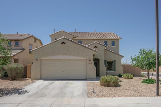 18557 W Sanna Street, Waddell, AZ 85355 (MLS #5769009) :: Phoenix Property Group