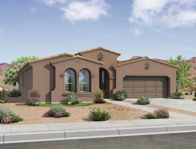 22556 E Duncan Street, Queen Creek, AZ 85142 (MLS #5769013) :: My Home Group