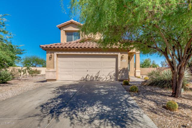 34955 N Mashona Trail, San Tan Valley, AZ 85143 (MLS #5769043) :: Yost Realty Group at RE/MAX Casa Grande