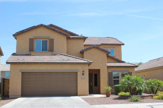 17941 W Alice Avenue, Waddell, AZ 85355 (MLS #5769061) :: Phoenix Property Group