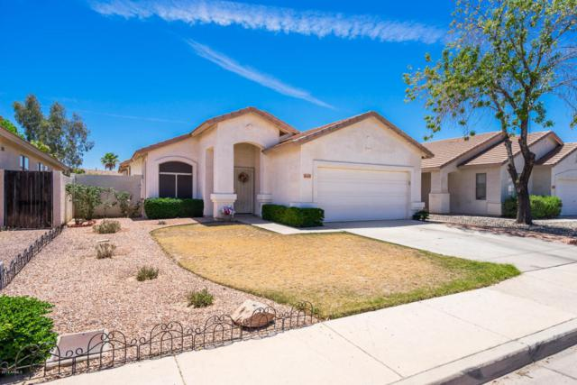 6615 W Golden Lane, Glendale, AZ 85302 (MLS #5769064) :: Riddle Realty