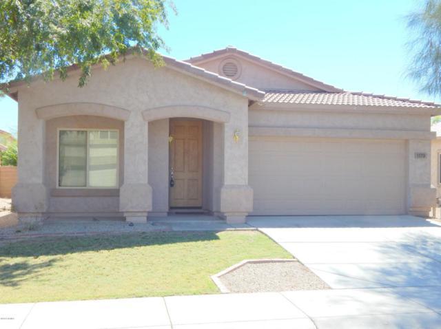 1179 E Blackfoot Daisy Drive, San Tan Valley, AZ 85143 (MLS #5769104) :: Revelation Real Estate