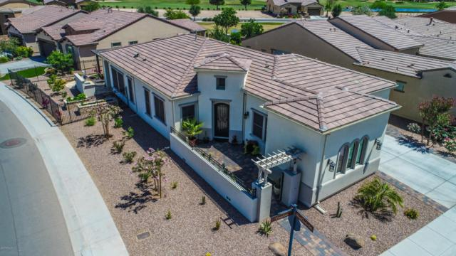1284 E Corsia Lane, San Tan Valley, AZ 85140 (MLS #5769114) :: Yost Realty Group at RE/MAX Casa Grande