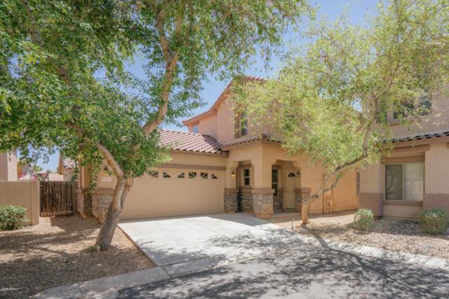 9429 W Terri Lee Drive, Phoenix, AZ 85037 (MLS #5769123) :: Riddle Realty