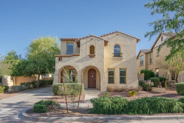 20425 W Terrace Lane, Buckeye, AZ 85396 (MLS #5769130) :: Phoenix Property Group