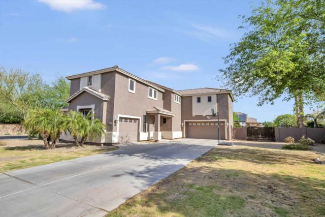 3278 E Bluebird Drive, Gilbert, AZ 85297 (MLS #5769143) :: Yost Realty Group at RE/MAX Casa Grande