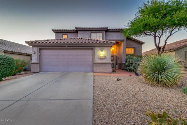 6708 E Hacienda La Noria Lane, Gold Canyon, AZ 85118 (MLS #5769208) :: Yost Realty Group at RE/MAX Casa Grande