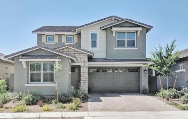 20657 W Briarwood Drive, Buckeye, AZ 85396 (MLS #5769250) :: Phoenix Property Group