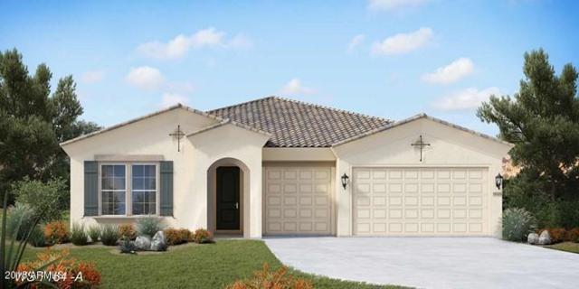 10339 E Gamma Avenue, Mesa, AZ 85212 (MLS #5769272) :: The Kenny Klaus Team