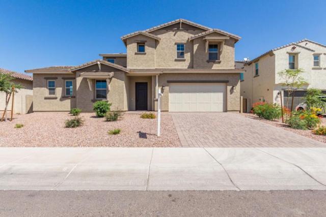 9816 W Lariat Lane, Peoria, AZ 85383 (MLS #5769297) :: Brett Tanner Home Selling Team
