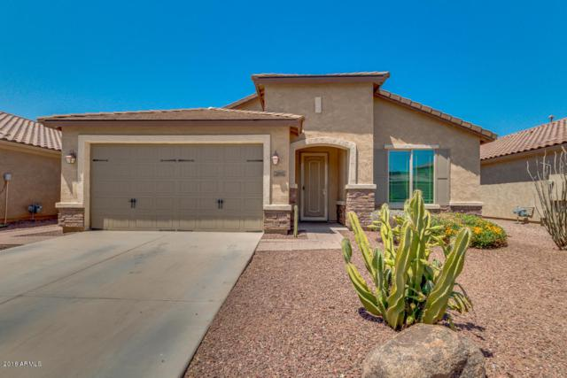 182 W Rosemary Drive, Chandler, AZ 85248 (MLS #5769306) :: The Kenny Klaus Team