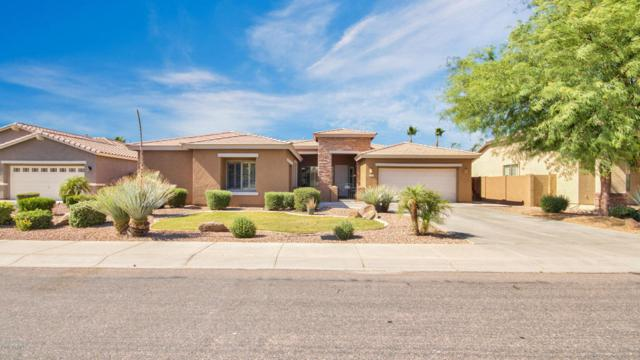 2714 E Grand Canyon Drive, Chandler, AZ 85249 (MLS #5769340) :: Yost Realty Group at RE/MAX Casa Grande