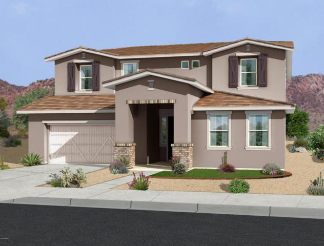22548 E Duncan Street, Queen Creek, AZ 85142 (MLS #5769386) :: Brett Tanner Home Selling Team