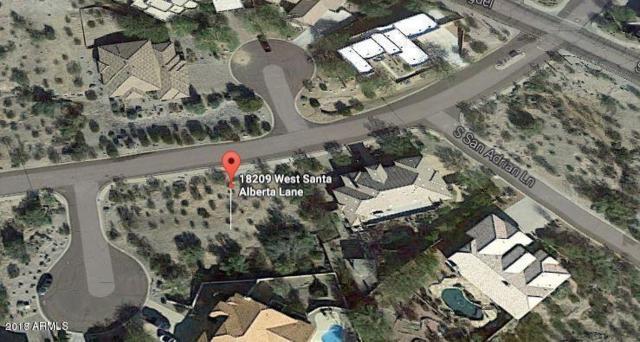 18209 W Santa Alberta Lane, Goodyear, AZ 85338 (MLS #5769396) :: Brett Tanner Home Selling Team