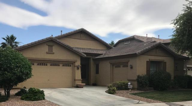 13519 W Merrell Street, Avondale, AZ 85392 (MLS #5769441) :: The Garcia Group