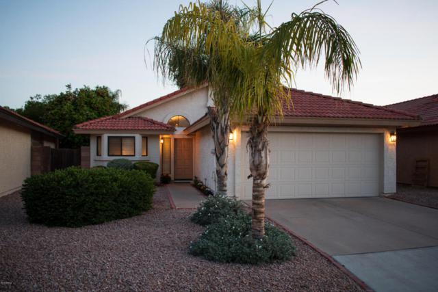 4279 W Gail Drive, Chandler, AZ 85226 (MLS #5769477) :: Kelly Cook Real Estate Group